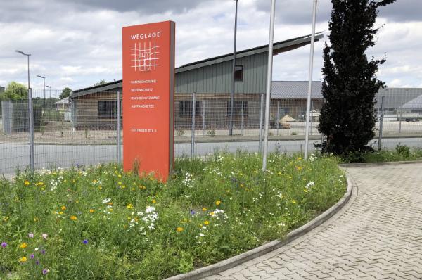 Blumenwiese auf dem Betriebsgelände von Weglage